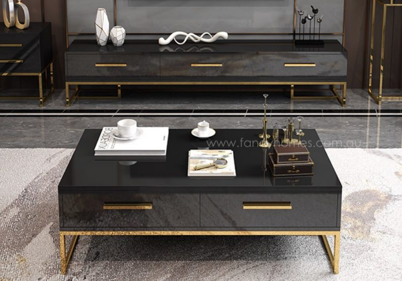 Fancy Homes Alessi rectangle storage coffee table and TV Unit in black with stainless steel base